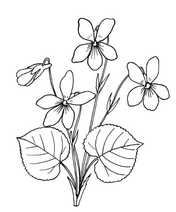 Декоративные цветы из ткани, бумаги, кожи: Практическое руководство.