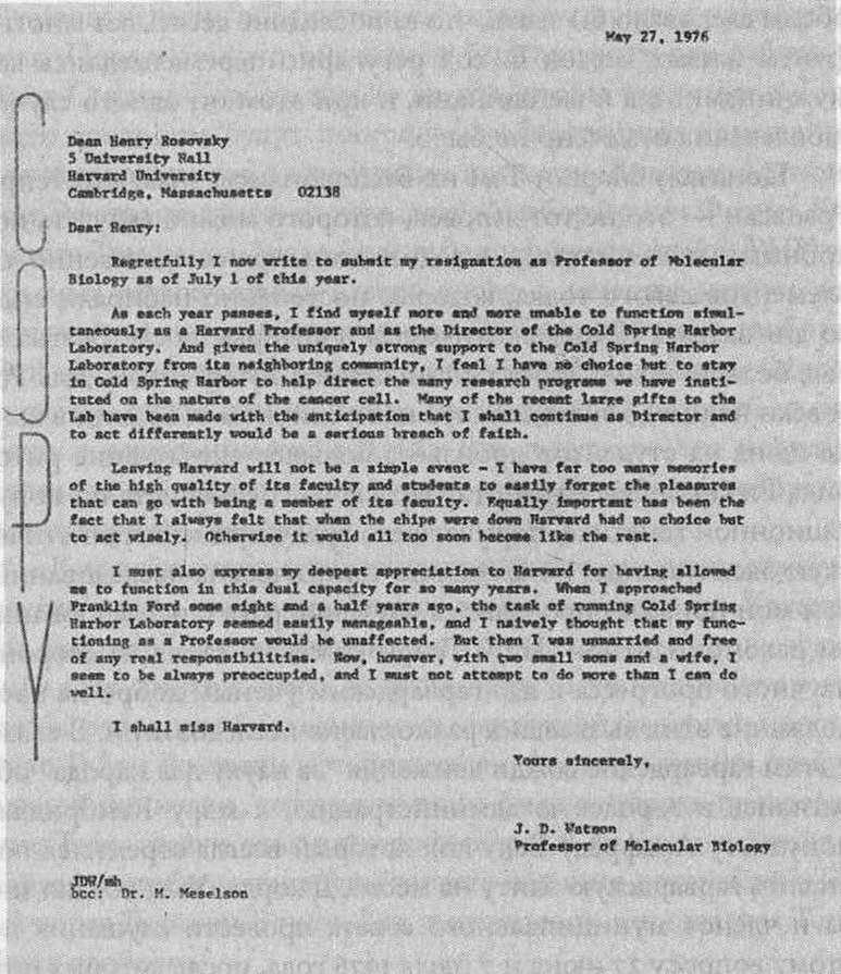 Рекомендательное Письмо Священника Образец - фото 11