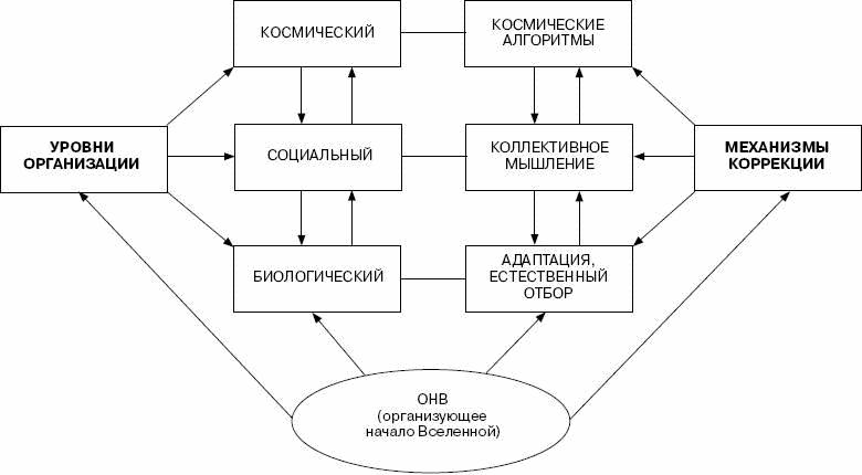 Биотическая часть биогеоценоза - биоценоз включает в себя такие показатели, как биомассу, видовое разнообразие...