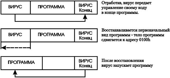 Схема работы вируса