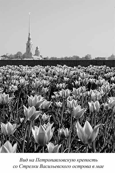 «Весной наступала благодать