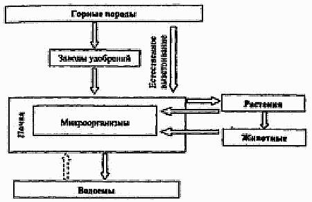 Основы общей экологии (fb2)  
