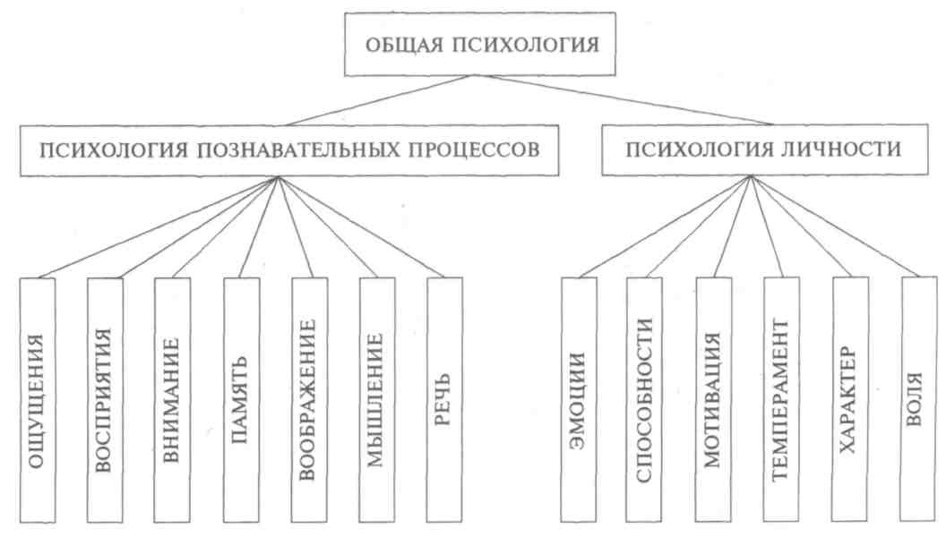 Структура общей психологии