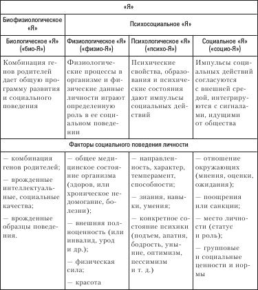 Социология. Краткий курс (fb2)