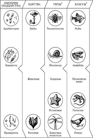 Естествознание и основы