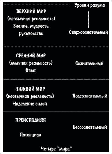 Шаманский опыт (fb2) |