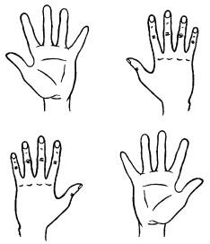 Контур руки