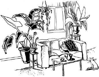 Вредители домашних растений