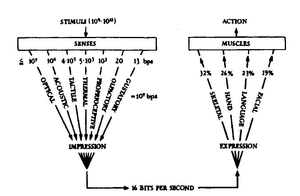 Схема потока информации