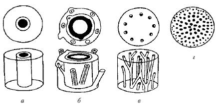Типы стелы а протостела б сифоностела