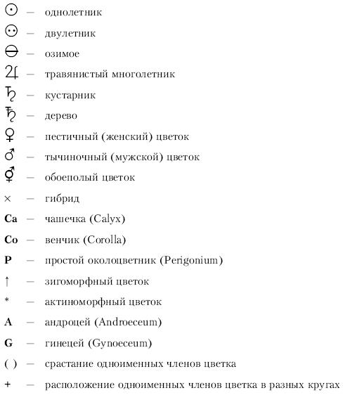 Анатомия и морфология высших