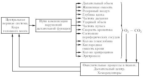 принципиальная схема на чертеже