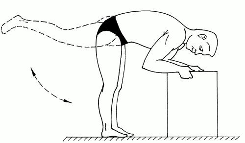 Упражнение 24