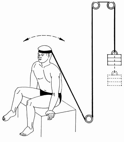 Упражнение 45