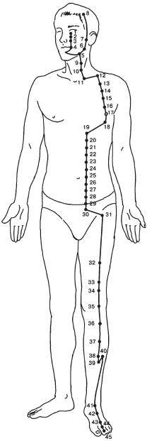 Меридианы и точки
