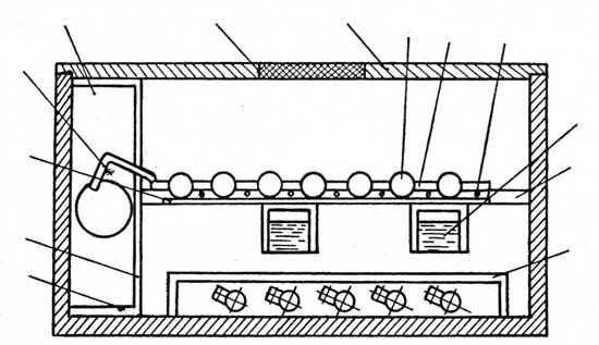 Домашний инкубатор: 1 — кружка