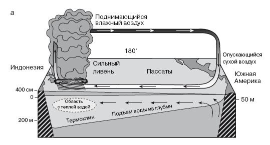 Схема явления Эль-Ниньо.