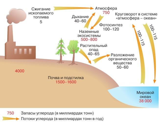 Парадоксы климата.