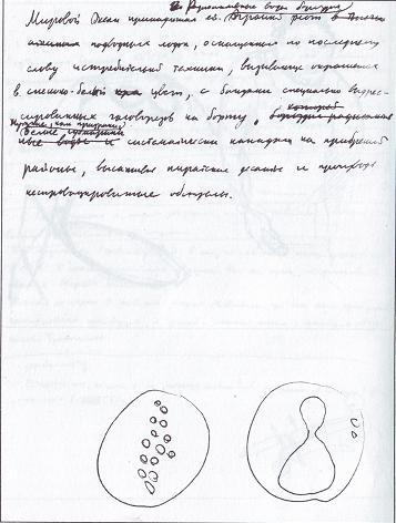 Неизвестные Стругацкие (fb2) |