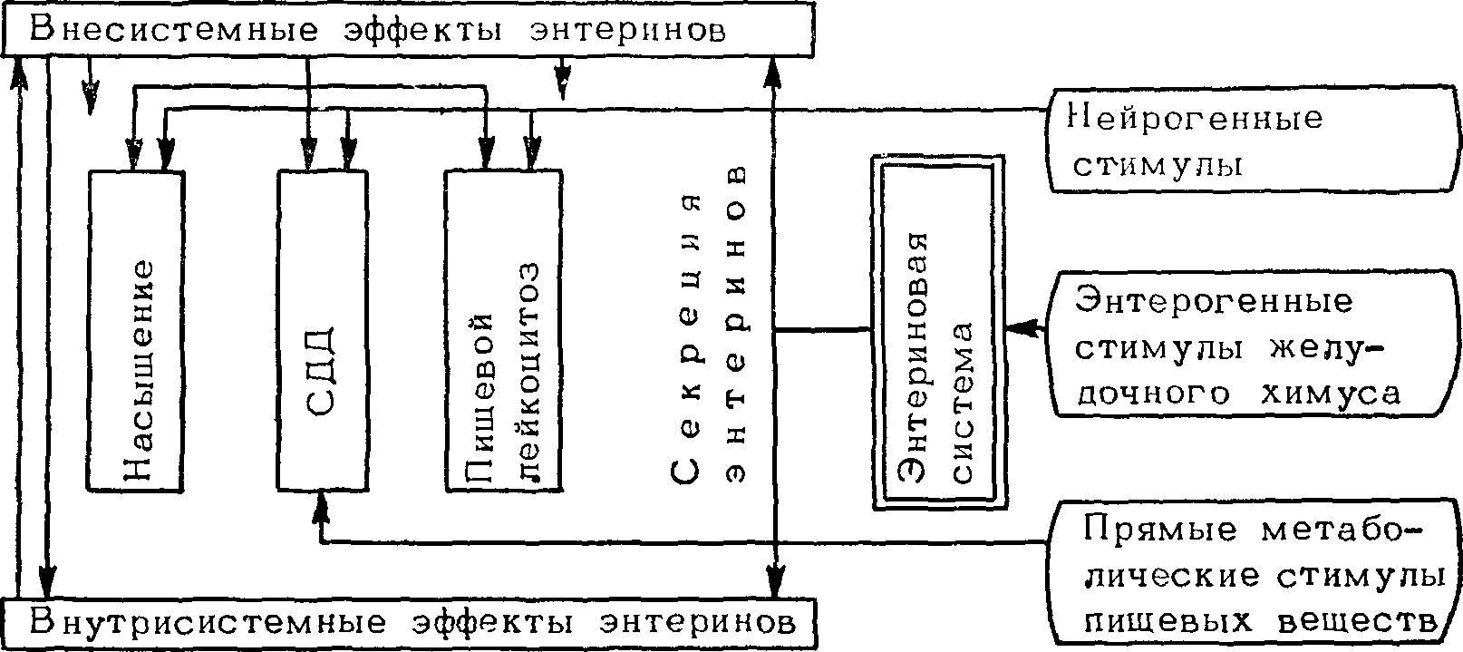 технологическая схема переработки эндокринного сырья
