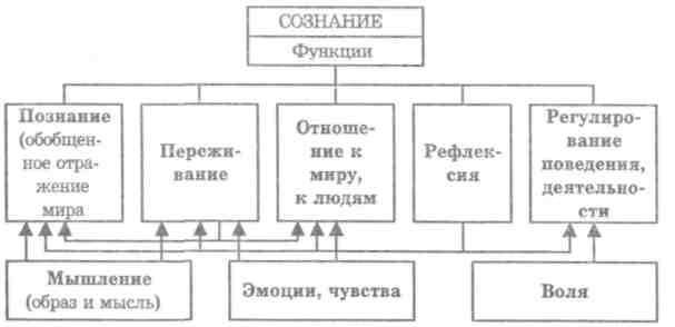 Основы психологии (fb2) |