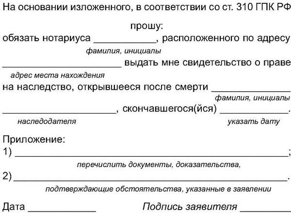 Новостройка оформление документов
