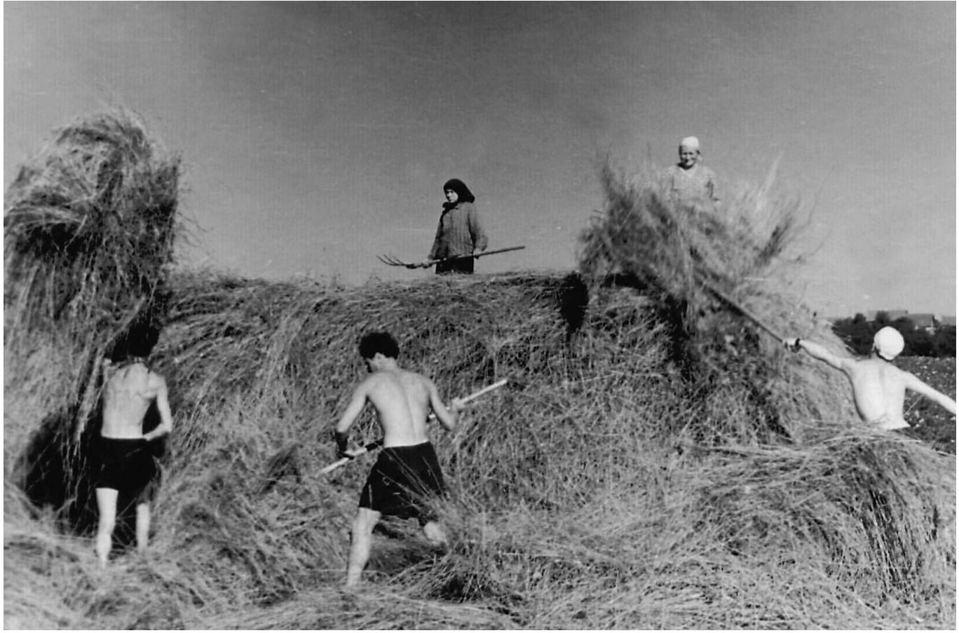 Трусики в 1970 годы 29 фотография