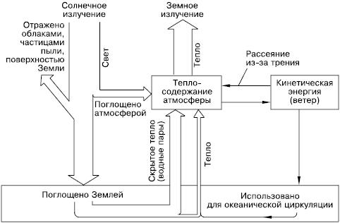 Общая экология (fb2) |