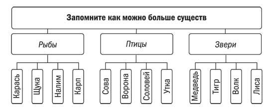 Схема дерева власти с ветвями 442