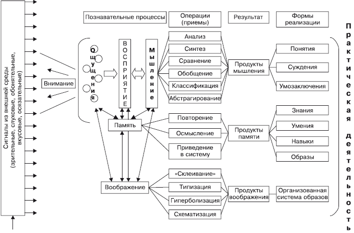 Схема обработки информации в