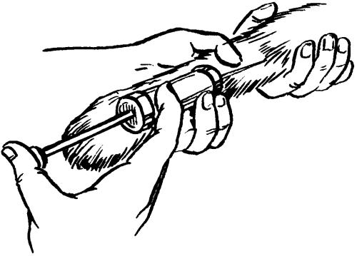 Ветеринарный справочник для владельцев собак _47