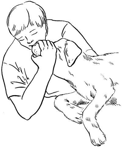 Ветеринарный справочник для владельцев собак _56