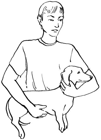 Ветеринарный справочник для владельцев собак _64