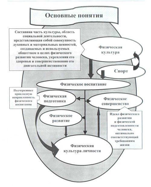 Основы теории и методики