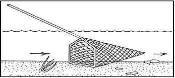 ужение рыбы