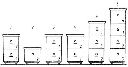Примерная схема перемещения корпусов при многокорпусном содержании пчел: 1- в конце осени и зимой; 2...