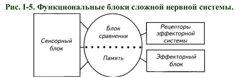 В архитектуре схемы учтены