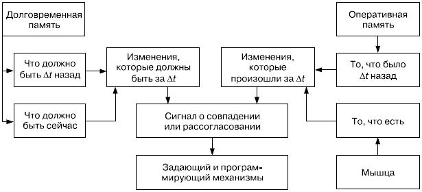 Схема этапов сличения