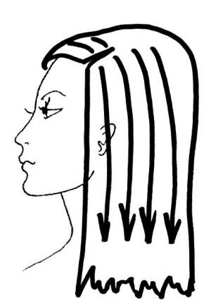 волос (fb2) | Либрусек