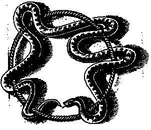 чаша со змеей вектор