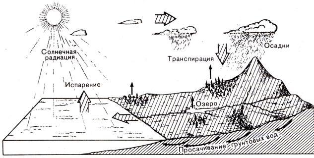 Схема круговорота воды показана на рисунке 4. Благодаря солнечной энергии огромные массы воды постоянно испаряются с...