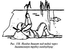 http://lib.rus.ec/i/67/346167/_158.jpg