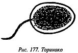 http://lib.rus.ec/i/67/346167/_177.jpg