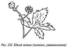 http://lib.rus.ec/i/67/346167/_232.jpg