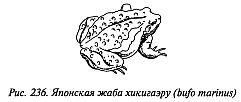 http://lib.rus.ec/i/67/346167/_236.jpg