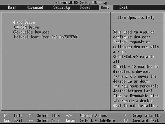 жесткий диск (HARD DRIVE). сменные устройства... привод CD/DVD (CD-ROM Drive).  Раздел Boot настраивает начальный...