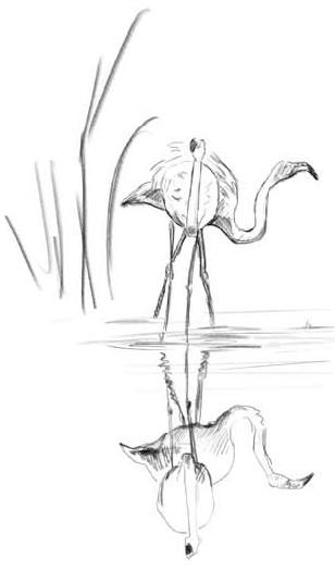 О чём шептались фламинго (fb2)