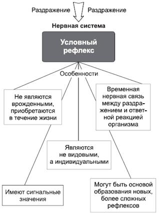 Особенности условных рефлексов