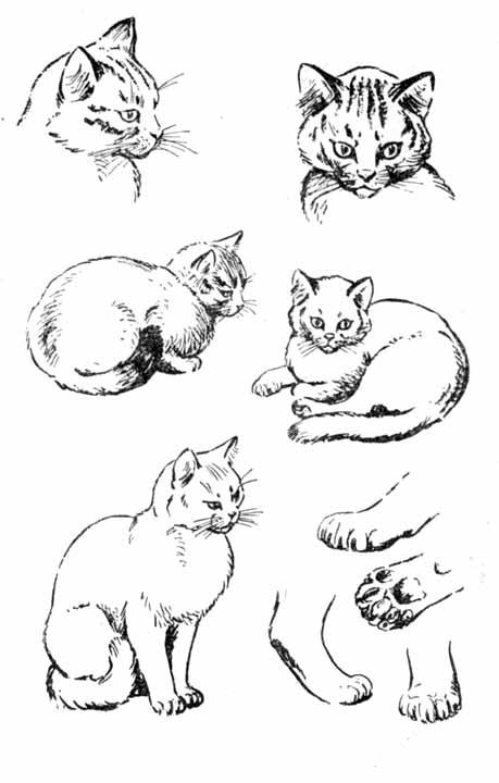 На рисунке 37 показан пример