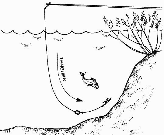 поплавки для ловли толстолоба